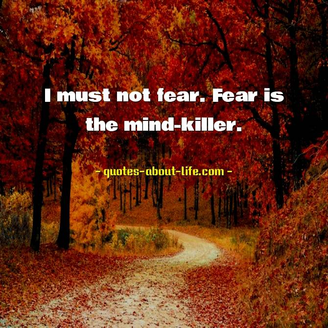 I must not fear.Fear is the mind-killer