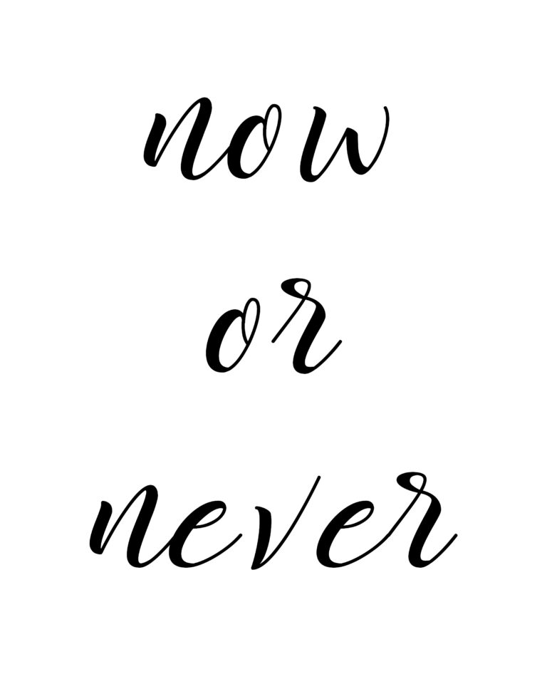 It is Now or Never Quotes | Do it now quotes