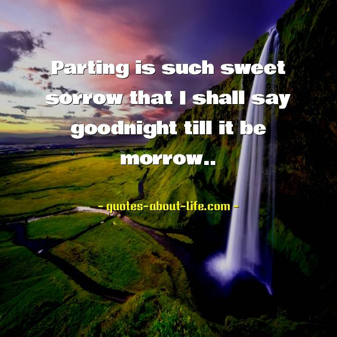 Parting is such sweet sorrow that I shall say goodnight till it be morrow