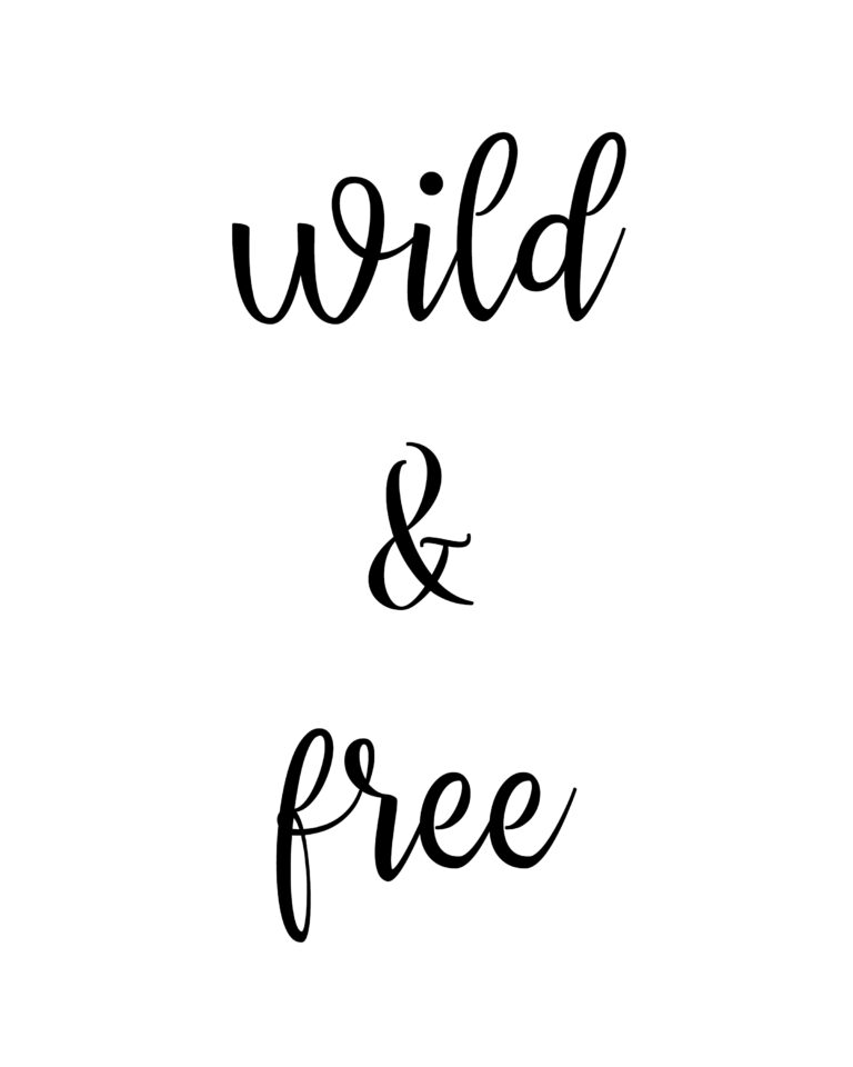 Wild and Free  Travel & Free Quotes