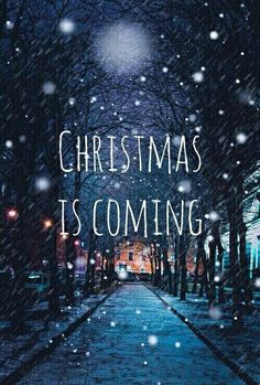 100+Cute Christmas Quotes | Christmas Card Messages & Wishes for the Holidays